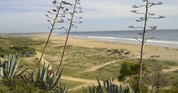 Playa Conil de la Frontera